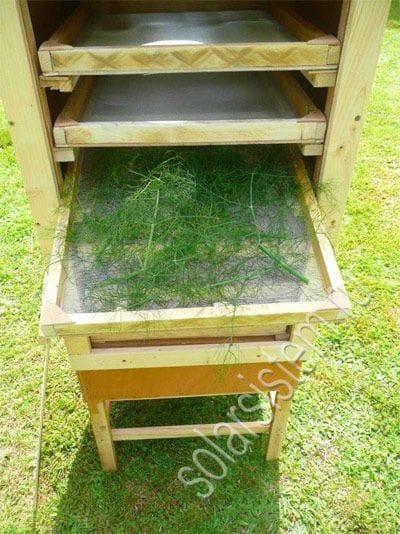 Сушильный шкаф для овощей и фруктов