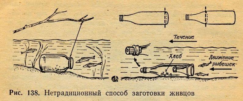 Как сделать ловушку для рыбу