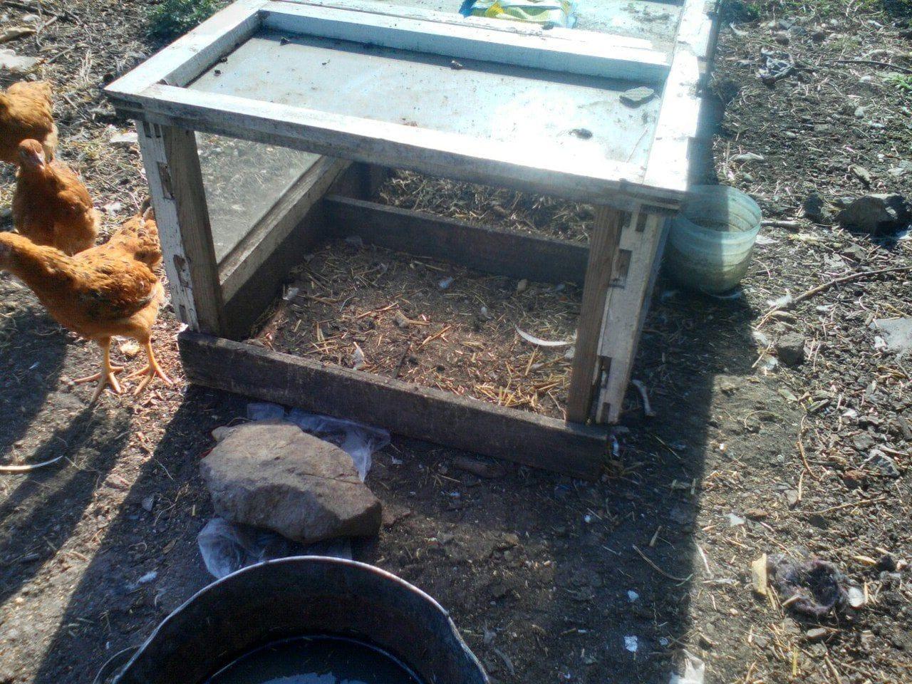 Как сделать цыплятник для 774
