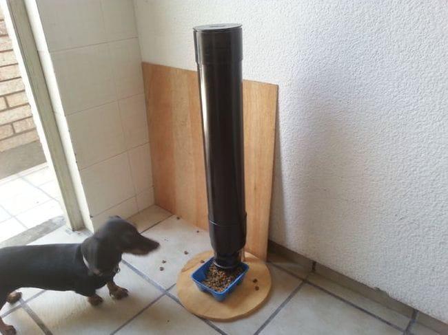 Автоматическая кормушка для собаки