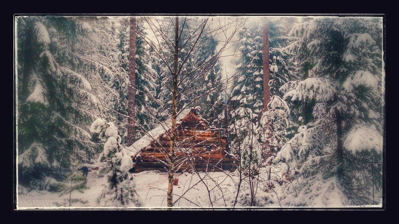 Постройка зимовья своими руками