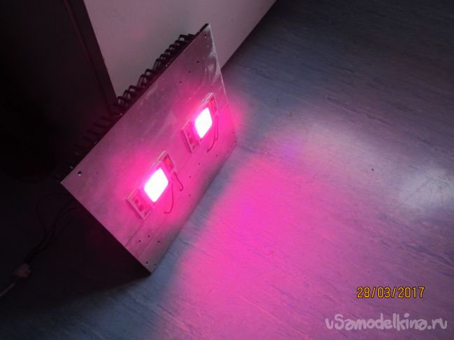 Светодиодный  светильник 100 ватт  для выращивания  огурцов  и томатов