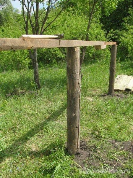 Как мы строили гусятник «из ничего»