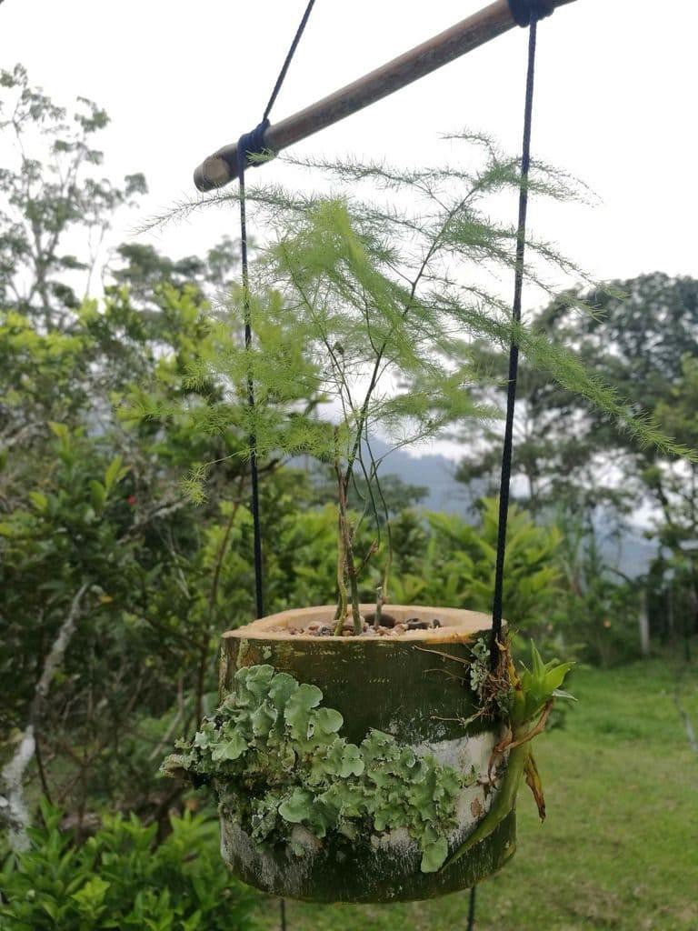 Подвесной цветочный горшок