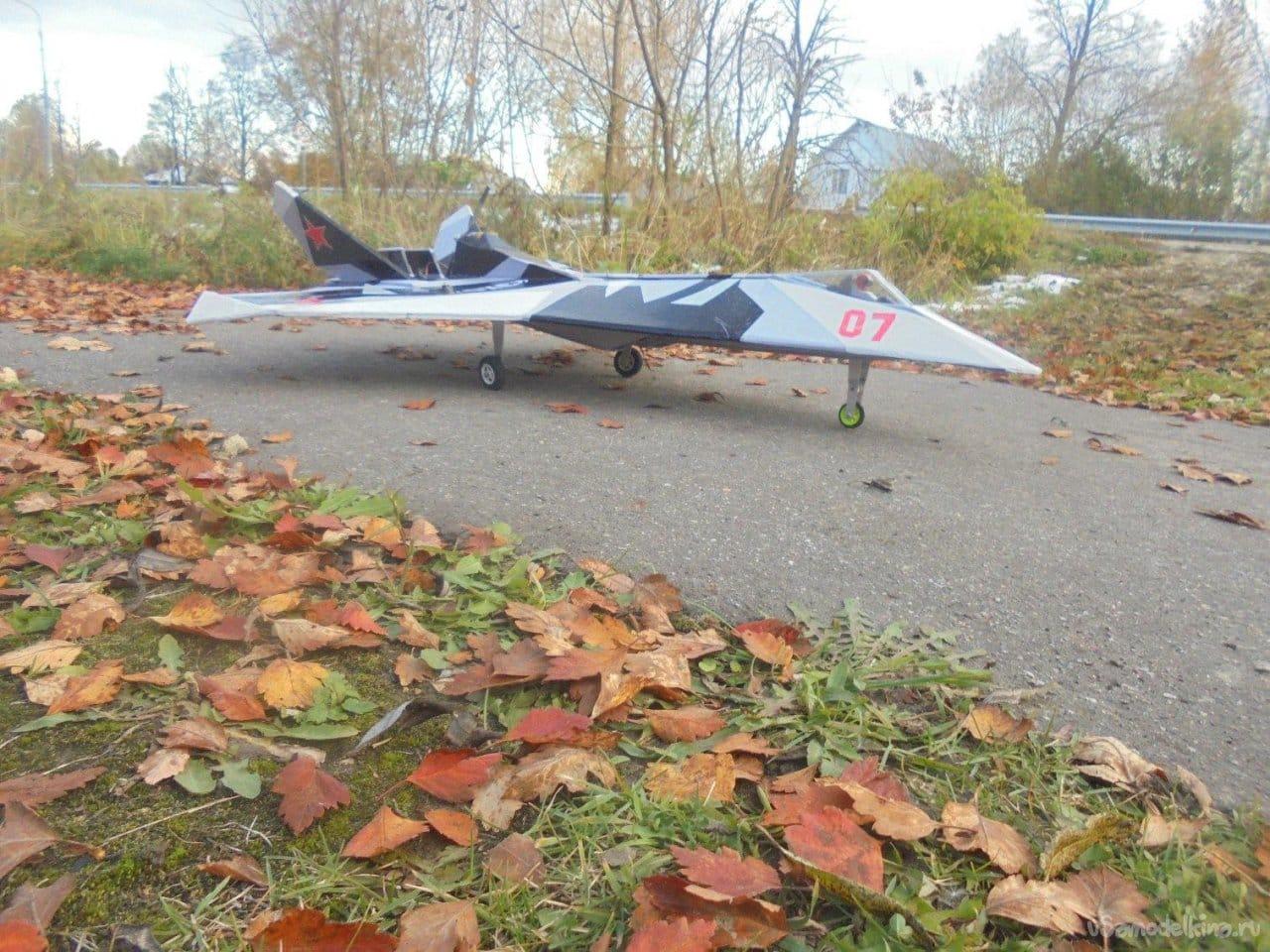 Авиамодель АлиС-631-5 «Эхо»